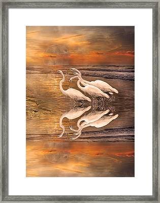 Dreaming Of Egrets By The Sea Reflection Framed Print