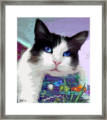 Dreaming Of Fish Framed Print