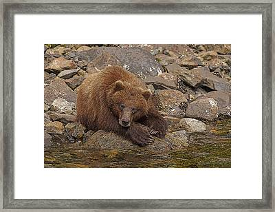 Dreaming Of Salmon- Abstract Framed Print by Tim Grams
