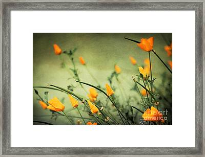 Framed Print featuring the photograph Dreaming Of Spring by Ellen Cotton