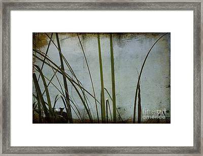 Framed Print featuring the photograph Dreaming Of Summer by Chris Armytage