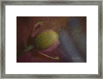 Dreaming Of What I Might Become Framed Print by Mary Machare