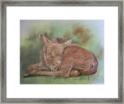 Dreaming Framed Print by Turea Grice