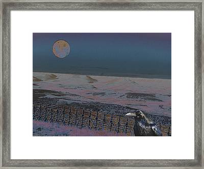 Framed Print featuring the photograph Dreamland by Aurora Levins Morales