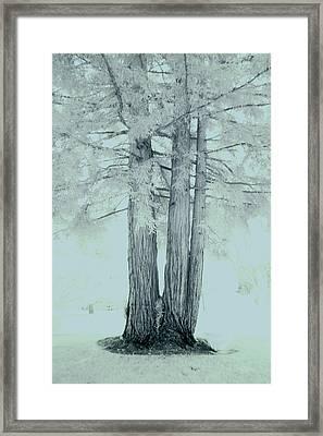 Imagination #08 Framed Print