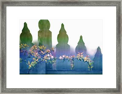 Framed Print featuring the photograph Dreams Of A Picket Fence by Holly Kempe