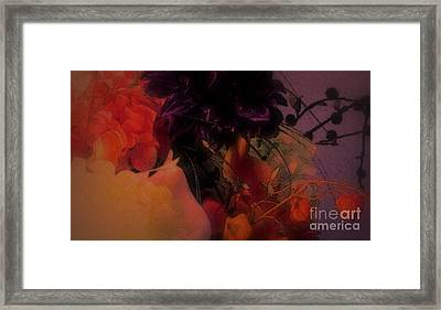 Framed Print featuring the photograph Dreams Of Alphonse by Roxy Riou