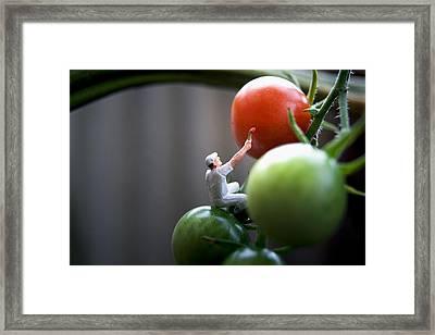 Dreams Of Ketchup Framed Print by Max Josefsson