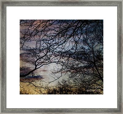 Dreamy 2 Framed Print