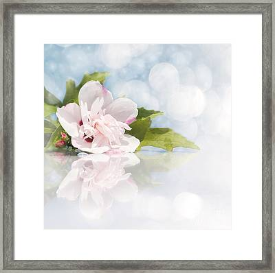 Dreamy Althea Framed Print by Sari ONeal