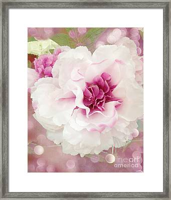 Dreamy Cottage Shabby Chic Pink And White Soft Ethereal Fluffy Rose Floral Art Impressionistic  Framed Print by Kathy Fornal