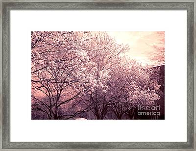 Dreamy Ethereal Pink And White South Carolina Trees Blossoms Framed Print