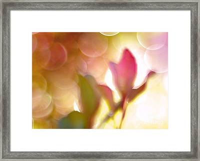 Dreamy Ethereal Pink Tulip Bokeh Circles Framed Print by Kathy Fornal