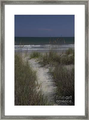 Dreamy Path To The Beach Framed Print by Teresa Mucha