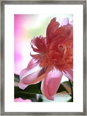 Dreamy Peonie Framed Print