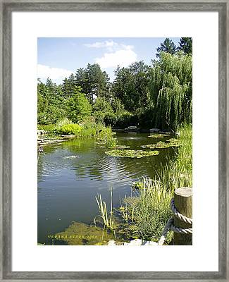 Framed Print featuring the photograph Dreamy Pond by Verana Stark