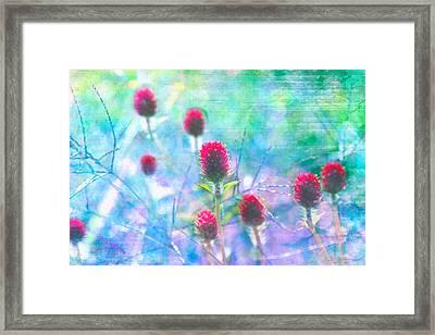 Dreamy Red Spiky Flowers 2 Framed Print by Karen Stephenson