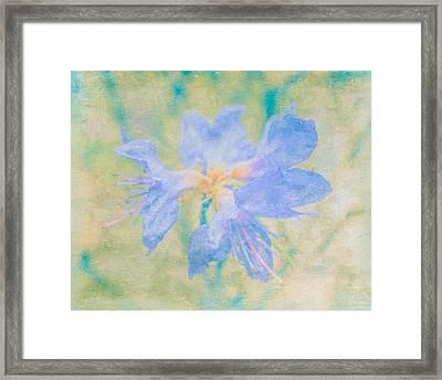 Dreamy Rhododendron Bloom Art Framed Print by Priya Ghose