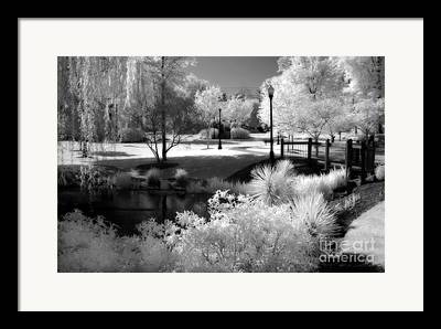 Dreamy Infrared Framed Prints