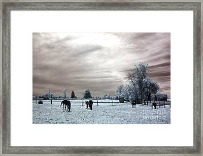 Dreamy Surreal Infrared Horse Landscape Framed Print by Kathy Fornal