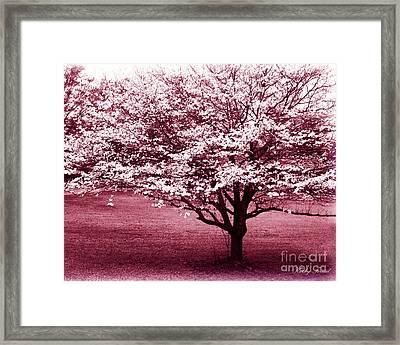 Dreamy Surreal Pink South Carolina Trees  Framed Print