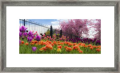 Dreamy Tulip Garden Framed Print