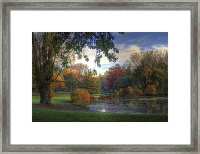 Dreamy View Framed Print
