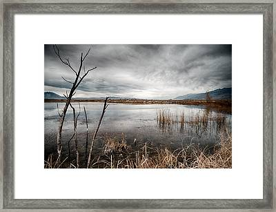 Dreary Framed Print by Cat Connor
