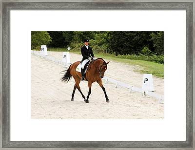 Dressage Test Framed Print