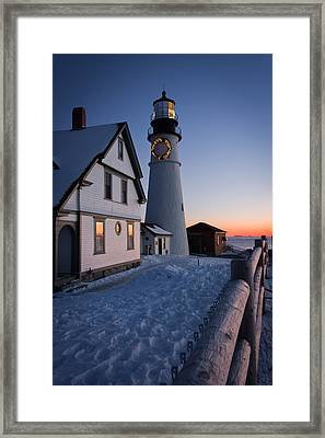 Dressed For The Holidays Framed Print by Benjamin Williamson