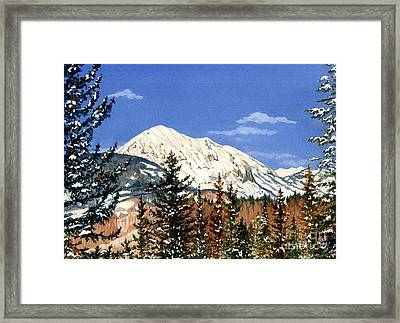 Dressed For Winter Framed Print by Barbara Jewell