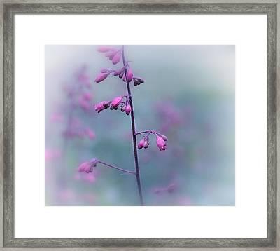 Dressed In Pink Framed Print