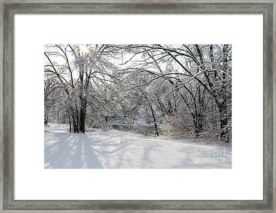 Framed Print featuring the photograph Dressed In Snow by Nina Silver