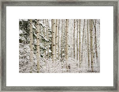 Dressed In White Framed Print by Idaho Scenic Images Linda Lantzy
