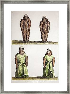 Dressed Mandrake Plants Framed Print