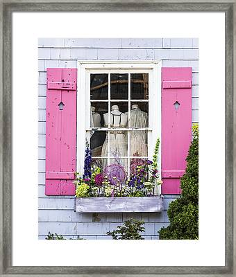 Dressed Up Framed Print by Dale Kincaid