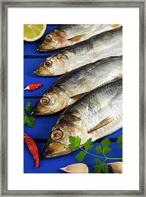Dried And Smoked Atlantic Herring Framed Print