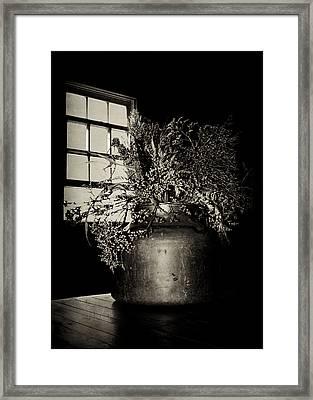 Dried Arrangement - Window Light Framed Print by Nikolyn McDonald