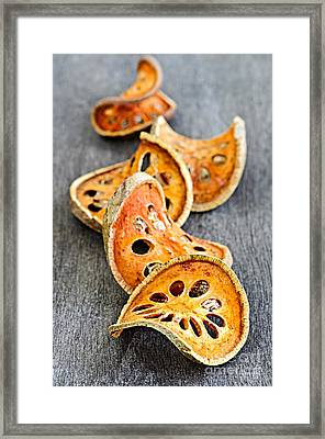 Dried Bael Fruit Framed Print by Elena Elisseeva