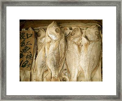 Framed Print featuring the photograph Dried Fish by Colleen Williams