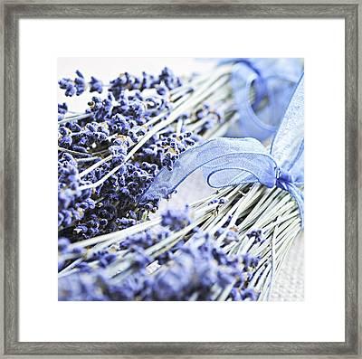 Dried Lavender Framed Print by Elena Elisseeva