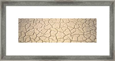 Dried Mud Death Valley Ca Usa Framed Print