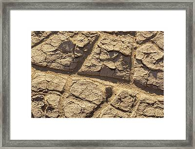 Dried Mud In Mesquite Flat Dunes, Death Framed Print by Rob Sheppard