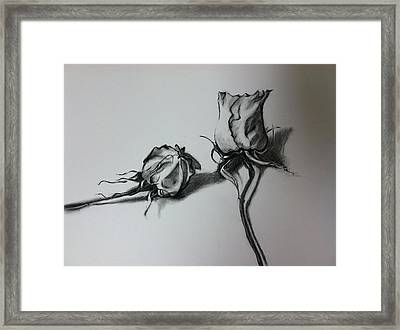Dried Rose Framed Print
