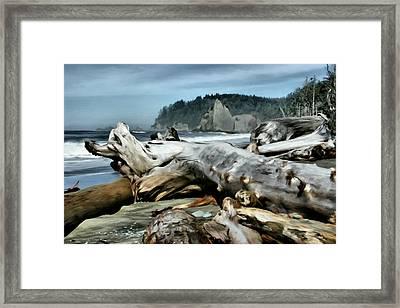 Drift Wood On Rialto Beach Framed Print by Paddrick Mackin