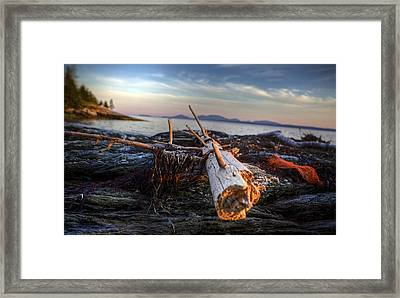 Drifting  Framed Print by Kenny  Noddin