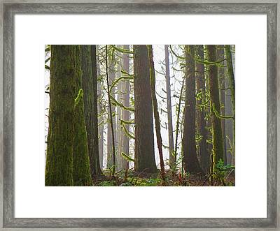 Drifting Light Framed Print