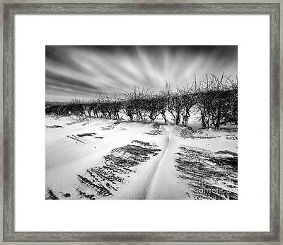 Drifting Snow Framed Print by John Farnan