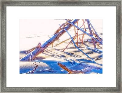 Framed Print featuring the photograph Driftwood 1 by Adria Trail
