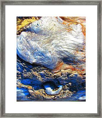 Driftwood 11 Framed Print